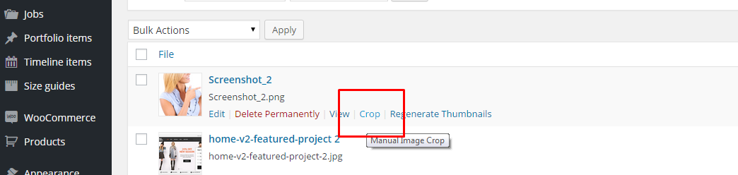 Manual crop option