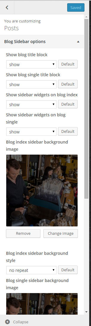Blog sidebar options