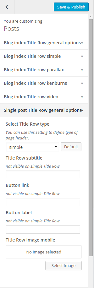 Single post title row general options